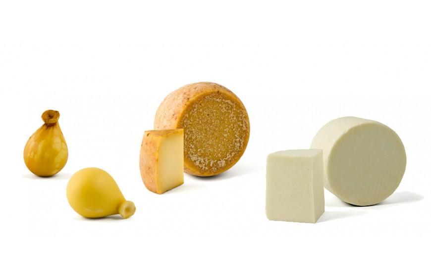 Il formaggio: espressione autentica del territorio